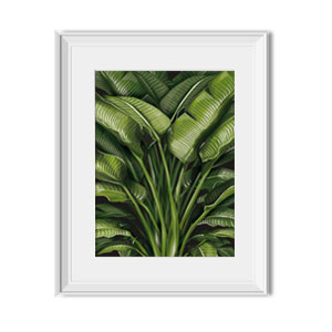 bird of paradise wall print